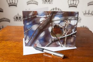 Red Red Robin Greetings Card. This greetings card features a photo of a robin perched on a branch.