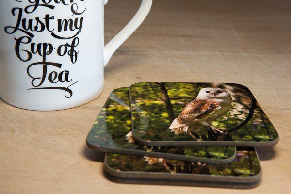 Barn Owl Coaster