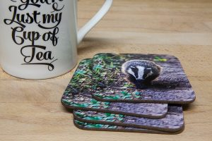 Badger Coaster