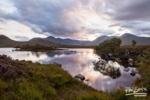 Evening on Rannoch Moor