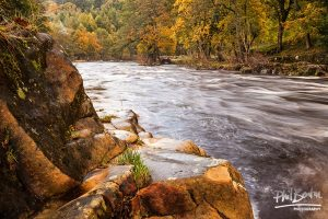 Autumn Flow Rothbury