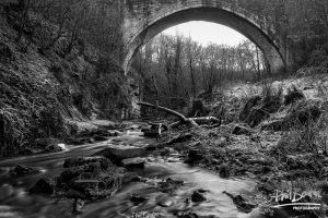 Frosty Causey Arch