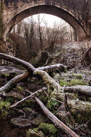 Frozen Branches Causey Arch