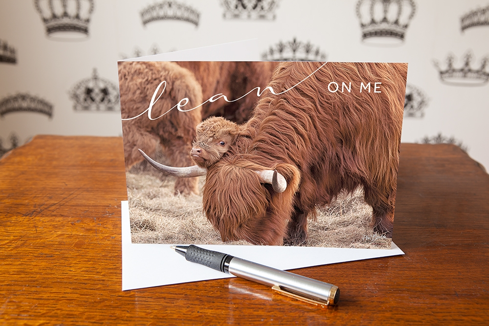 Lean On Me, Highland Cow & Calf, Quoted Greetings Card